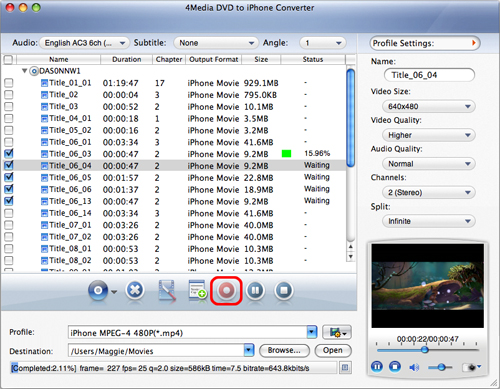 Mac DVD to iPhone converter