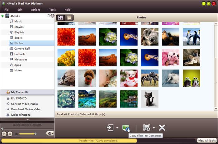 4Media iPad Max Platinum