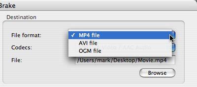 [Handbrake file format menu]